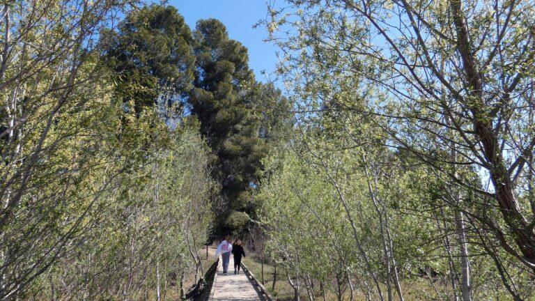 Un passeig per la reserva natural de Sebes