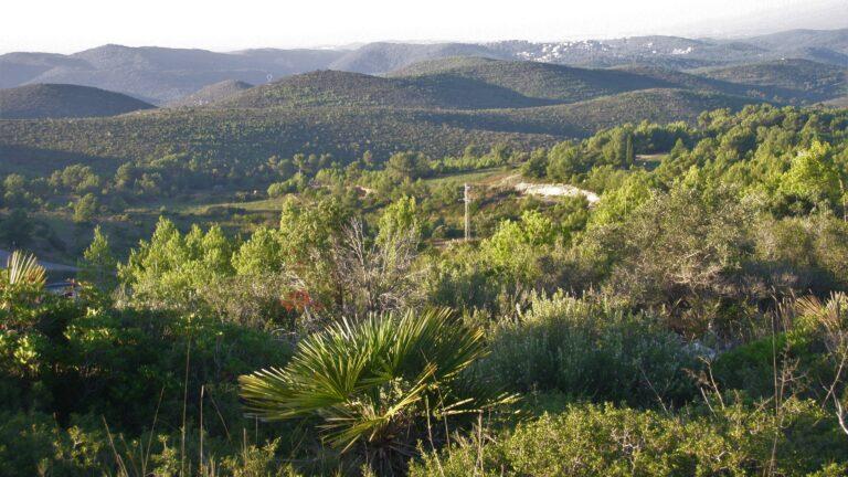 Ascensión al Puig de la Mola